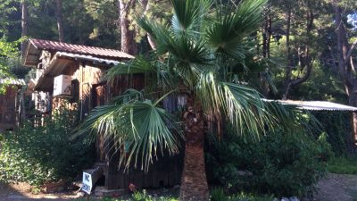 Olympos Mercan Bungalow