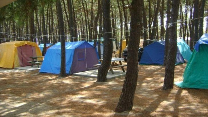 Erikli Camping, Kamp Alanları