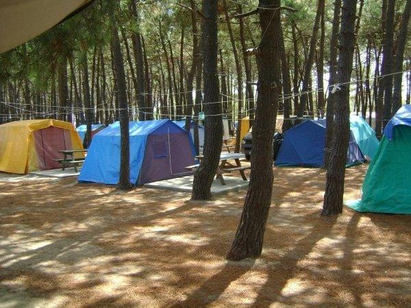 erikli kamp alanları